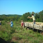 Small Farms in America
