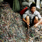 Dangers of electronic waste