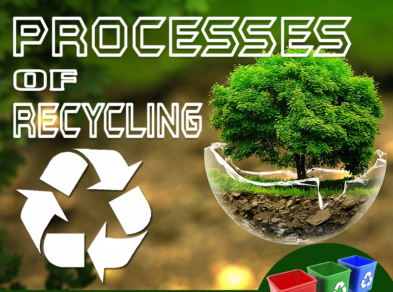 Process of recycling thumbnail