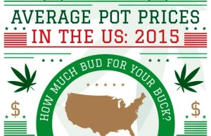 Average Pot Price in the US: 2015 [Infographic]
