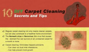 10 Must Known DIY Carpet Cleaning Secrets and Tips [Infographic]