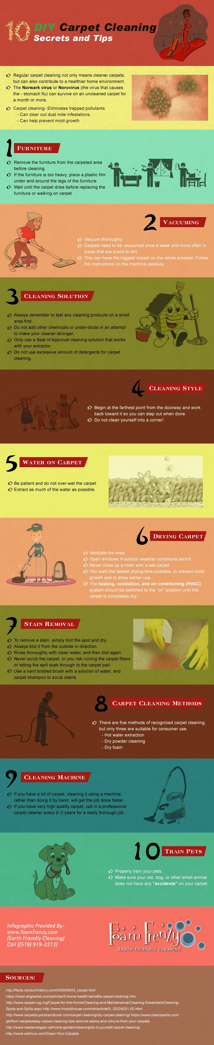 10 must known diy carpet cleaning secrets and tips infographic diy carpet cleaning infographic solutioingenieria Gallery