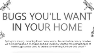 Bugs you want in your home [Infographic] Thumb