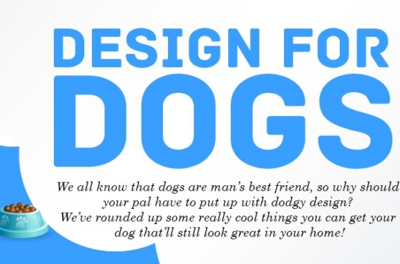 Design for dogs Infographic Thumb