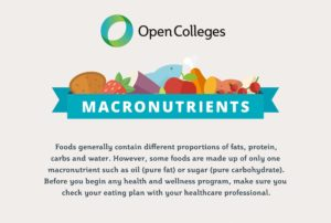 macronutrients infographic thumb