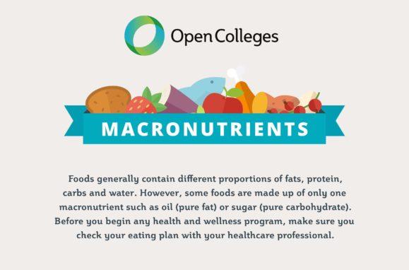 macronutrients infographic thumb
