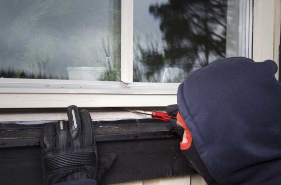 theft and vandalism insurance
