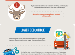 Benefits of a Comprehensive Car Insurance [Infographic]