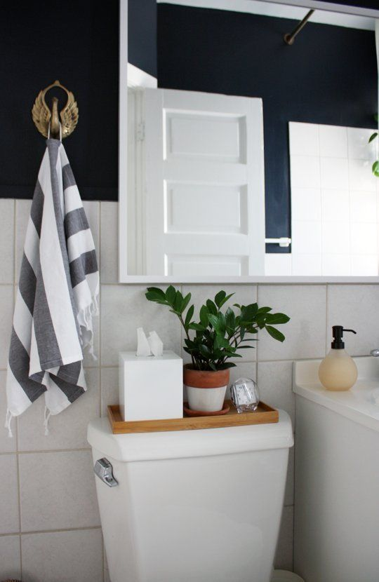 plants in bathrooms